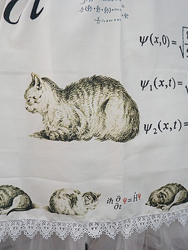 +Schrödinger's Cat+ Skirt016